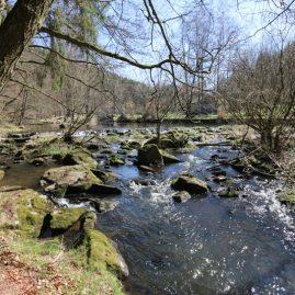 Wasser, Wald & Fels